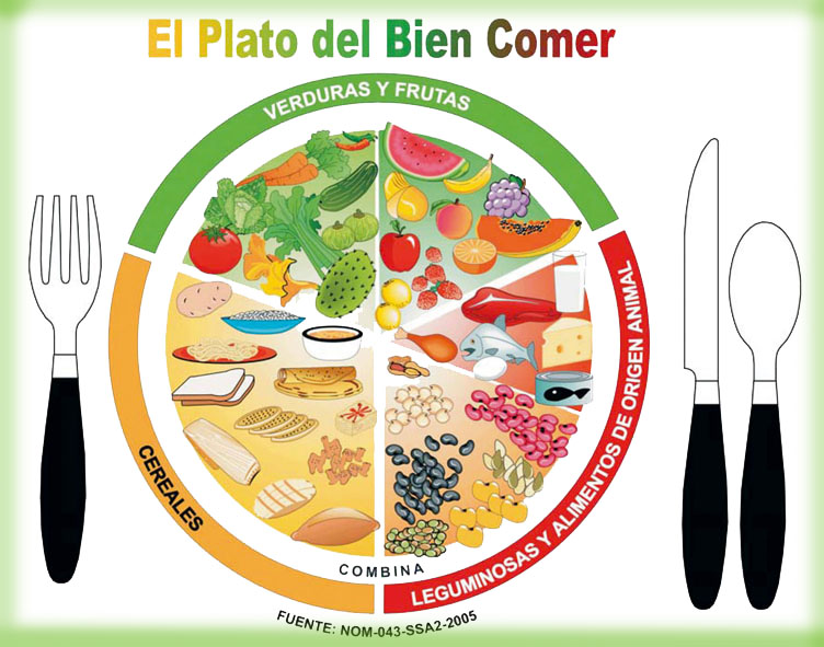comer correctamente para bajar de peso