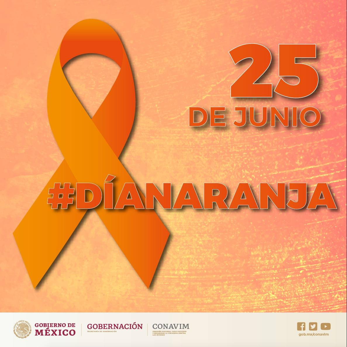 El Día Naranja busca movilizar a la opinión pública y a los gobiernos para emprender acciones concretas con el fin de promover y fomentar la cultura de la no violencia.
