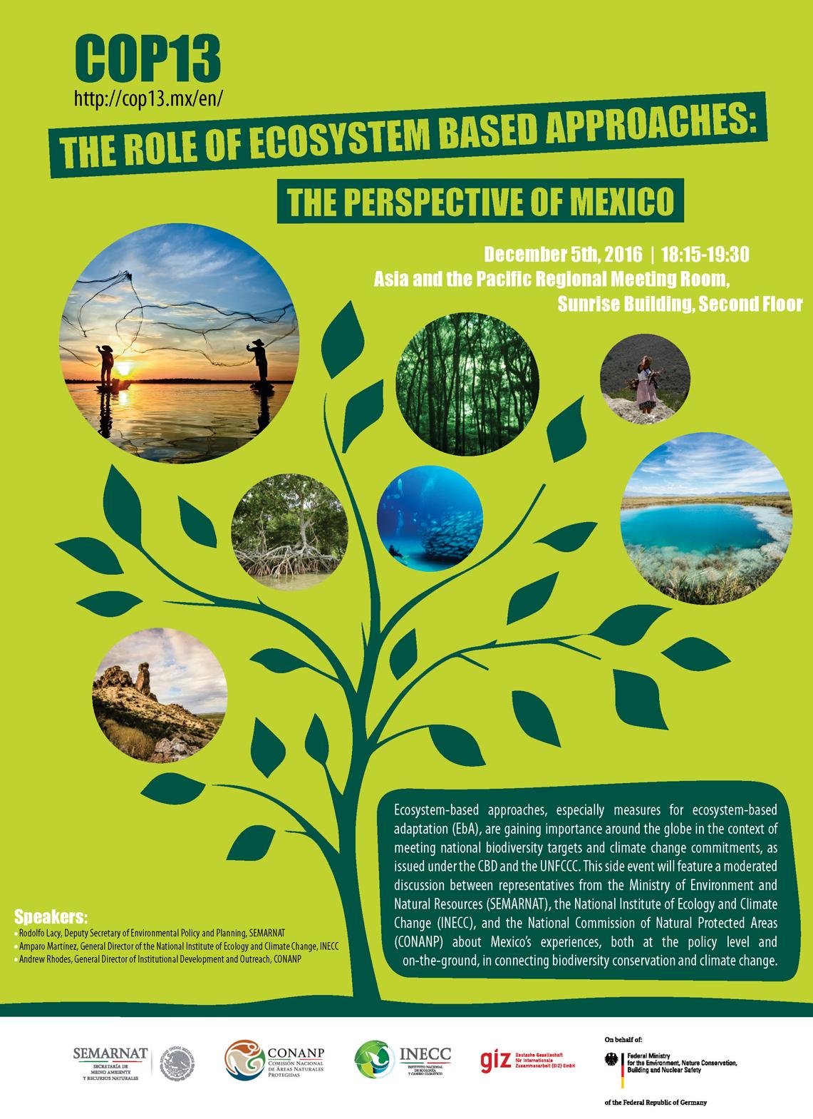 INECC presente en la COP13