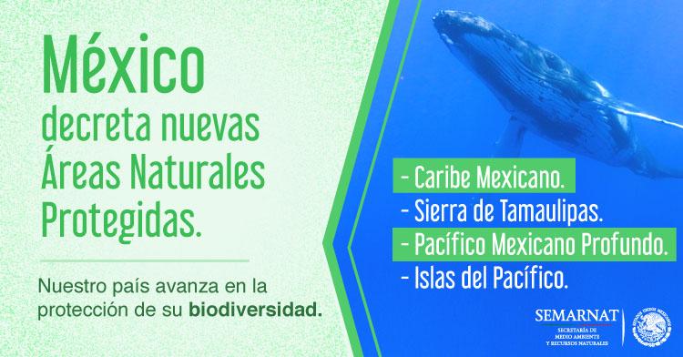 Con estos nombramientos México cumplirá la meta 11 de Aichi sobre conservación de la biodiversidad.