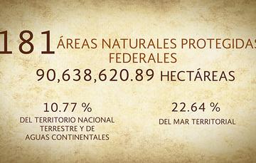 La CONANP protege 90,638,620.9 hectáreas en 181 Áreas Naturales Protegidas.
