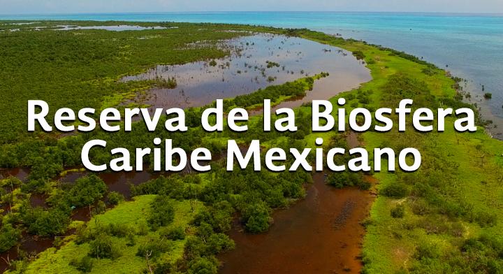 Su área total, equivale a la superficie del estado de Campeche.