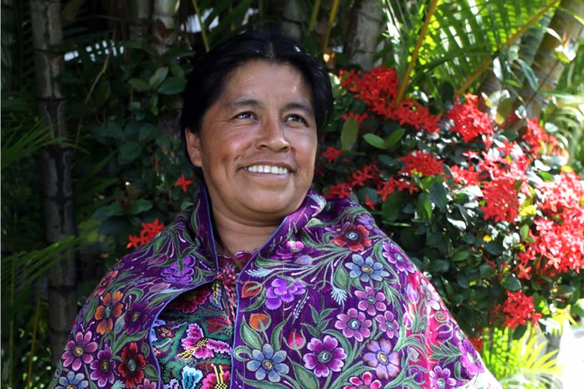 Indicadores Sobre Las Mujeres Indígenas. Resultados De La