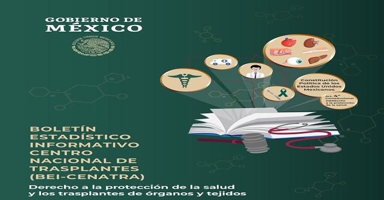 Boletín Estadístico - Informativo