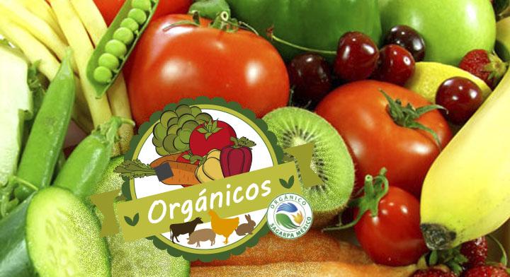 Los alimentos organicos importancia de