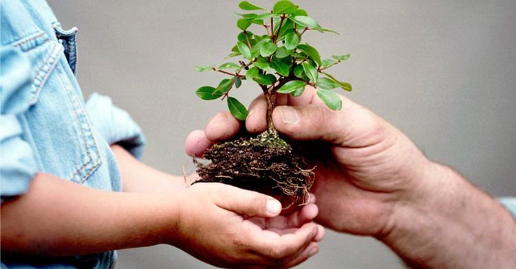 Corresponde a todos proteger el medio ambiente y cuidar nuestros recursos naturales.