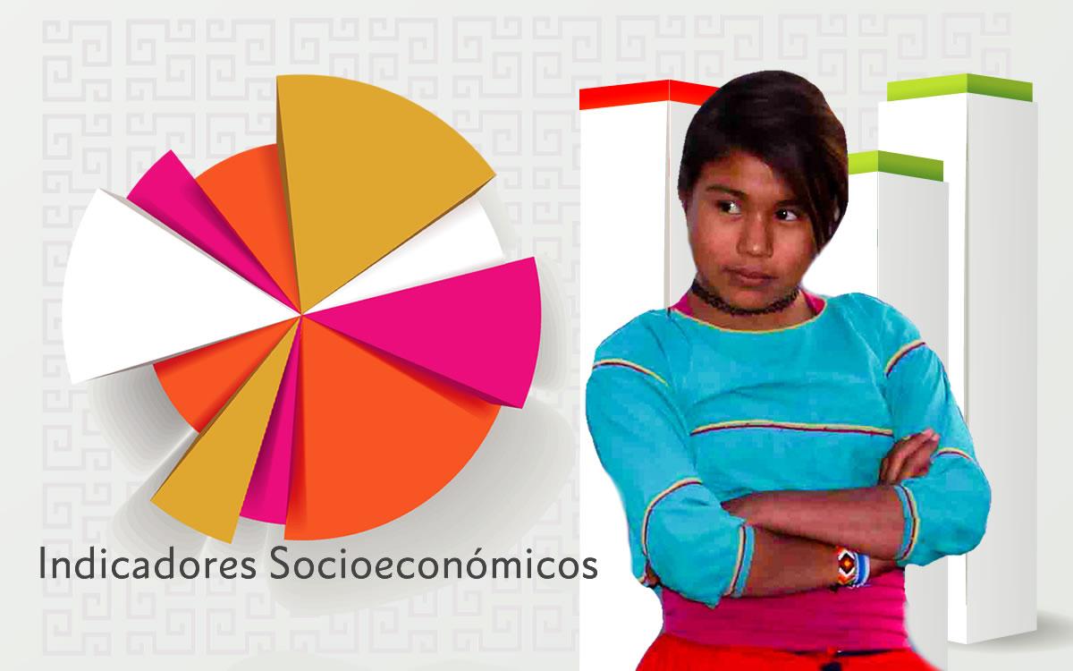 Indicadores Socioeconómicos de los Pueblos Indígenas de México, 2015.