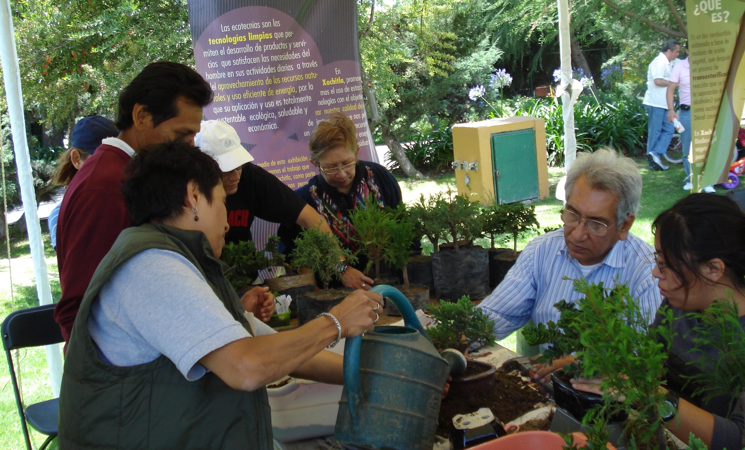 Taller ambiental sobre trasplante de árboles.