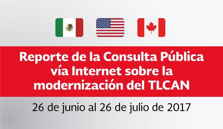 Reporte de la Consulta Pública vía Internet sobre  la modernización del TLCAN