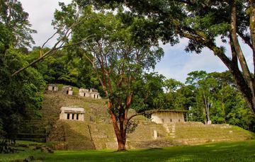 Vista general del sitio arqueológico Bonampak, Chiapas