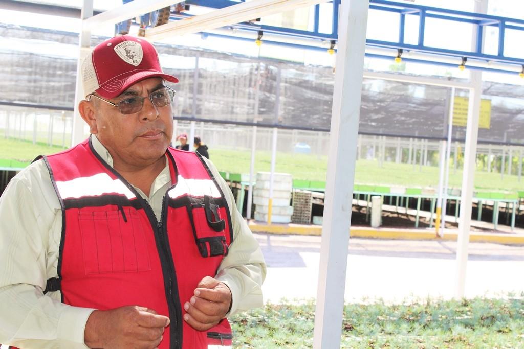 Cambi las armas por rboles comisi n nacional forestal for Viveros forestales conafor