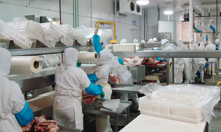 El gobierno de Emiratos Árabes Unidos notificó a la SAGARPA que aprobó siete establecimientos Tipo Inspección Federal con certificación Halal.