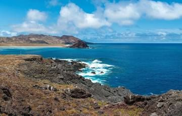 Proteger las islas Revillagigedo como zonas núcleo