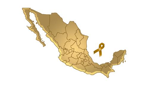 Cáncer Infantil en México.