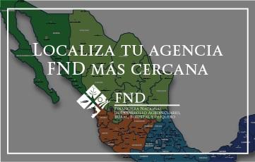 Agencias FND