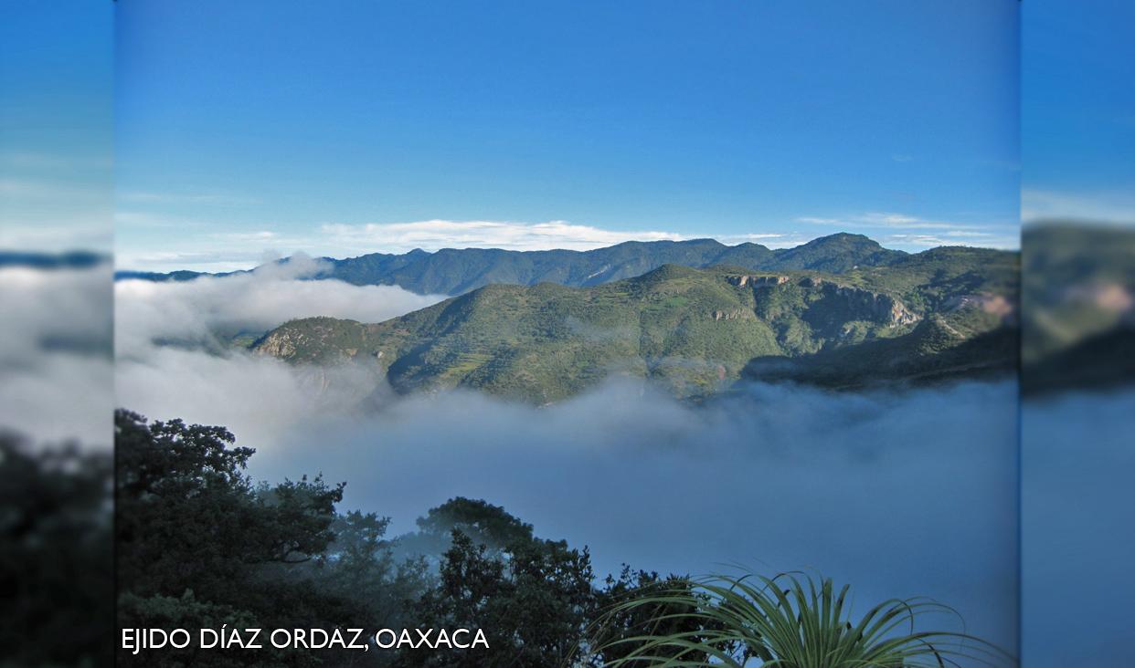 Área Destinada Voluntariamente a la Conservación (ADVC) y se comprometen a preservar los recursos naturales que existen en la misma