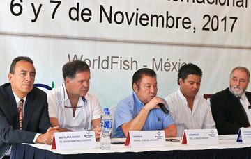Durante el 2016, la tilapia se consolidó como la especie número uno por su volumen de producción en la acuacultura nacional con un poco más de 152 mil toneladas, y nuestro país cuenta con un amplio potencial para su desarrollo.