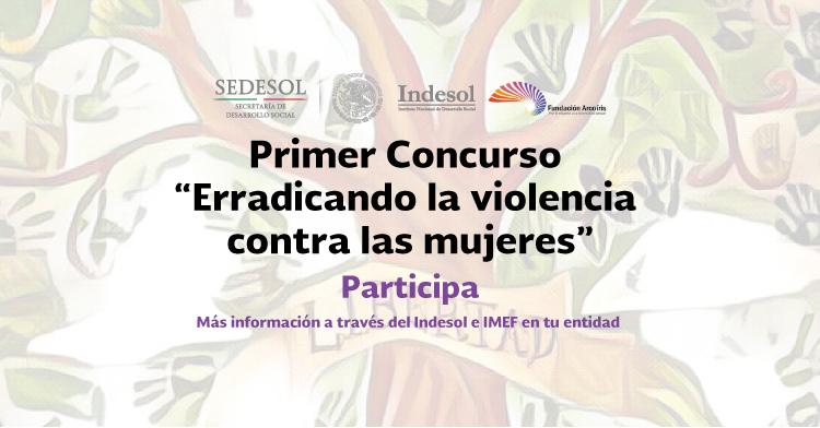 """Bases Concurso """"Erradicando la violencia contra las mujeres"""""""