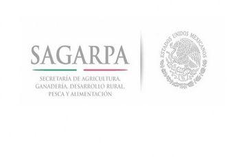 """Reporte preliminar de daños al sector agropecuario y pesquero por el paso del huracán """"Ingrid"""" y la tormenta tropical """"Manuel"""""""