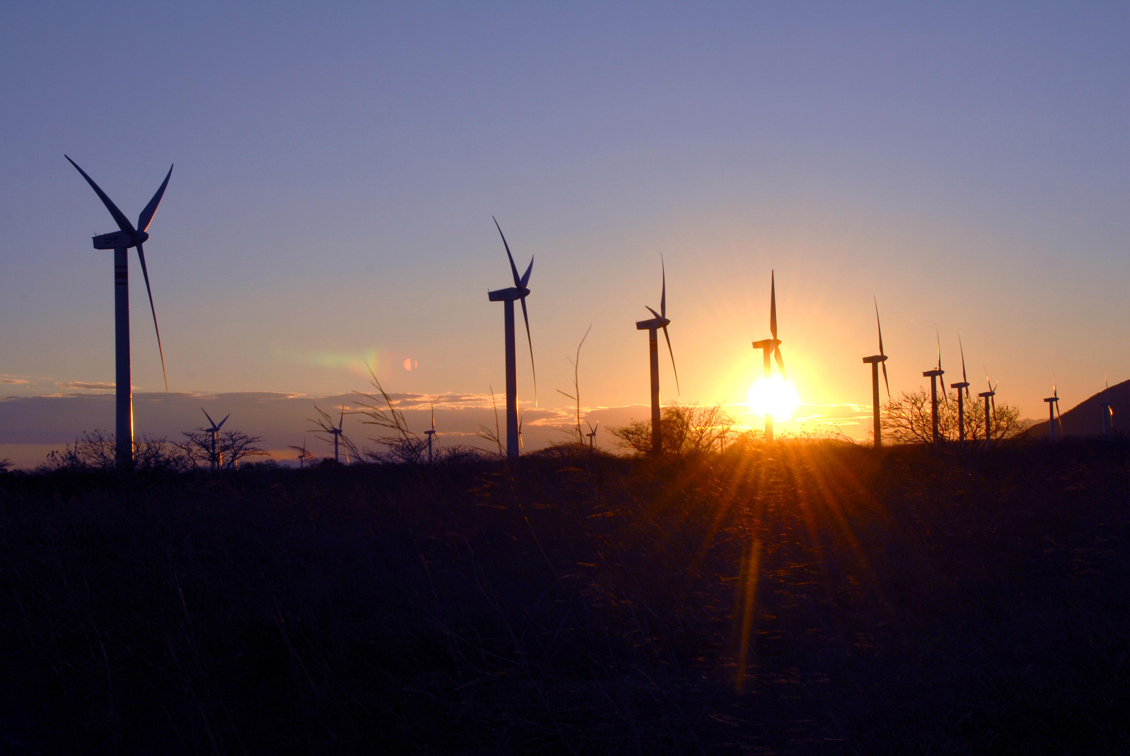 Participa en el evento de generación eléctrica más grande del mundo