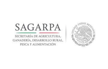 Recomienda SAGARPA consumo de productos sonorenses durante temporada decembrina