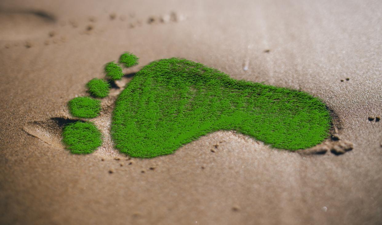 La huella ecológica es un indicador para conocer el grado de impacto de la sociedad sobre el ambiente.