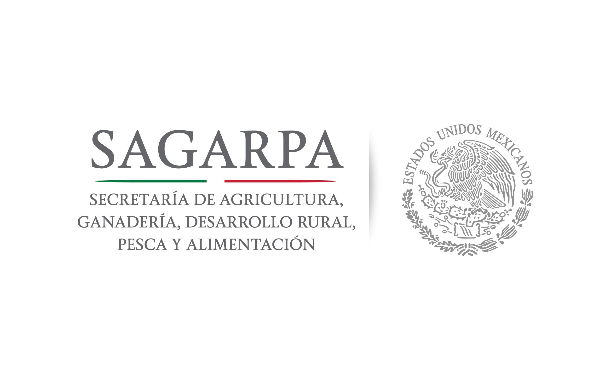Organiza SAGARPA mesas y foros estatales de consulta para conformar Plan Nacional de Desarrollo