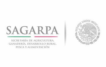 Recorren Sagarpa y Sedesol huertos familiares en el DF