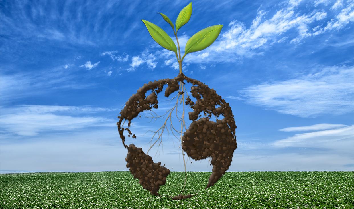 En el d a mundial del suelo se recuerda que este recurso - Como solar un suelo ...
