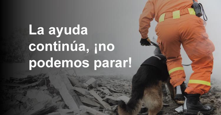 Dona botellas de pet para la reconstrucción de casas dañadas por los sismos