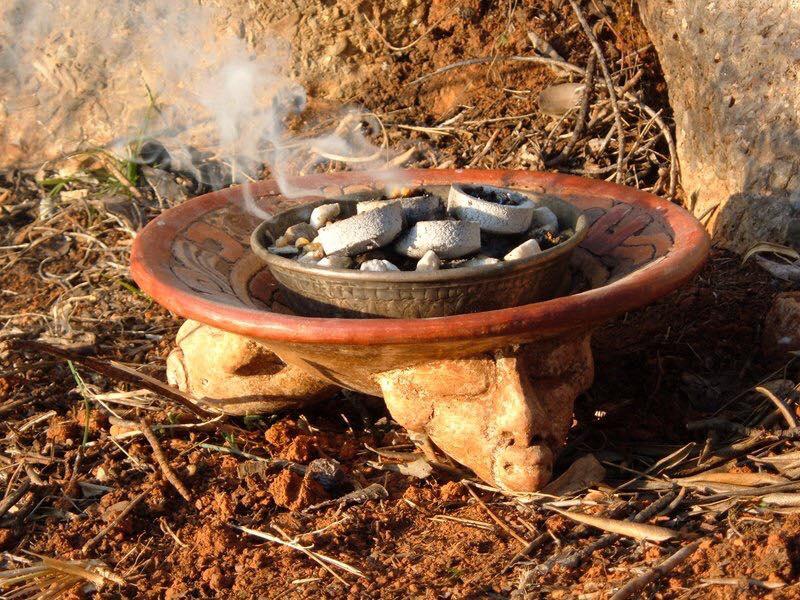 La siembra y recolección de la resina de burseras aromáticas reúne importancia social, económica, religiosa y cultural para muchas comunidades marginadas.