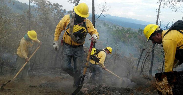 La existencia de los incendios está ligada a procesos productivos tradicionales ligados al uso del fuego, así como algunas causas naturales (rayos).