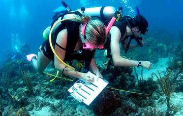 Los profesionistas en esta ciencia son conscientes de la extraordinaria diversidad biológica que caracteriza al país.