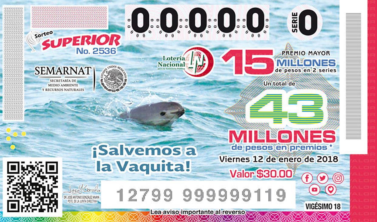 La vaquita marina es el mamífero acuático más amenazado del mundo. El gobierno de México reitera su compromiso de salvar esta especie endémica.