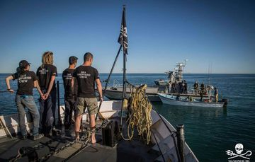 Alianzas estratégicas en la conservación de la vaquita marina