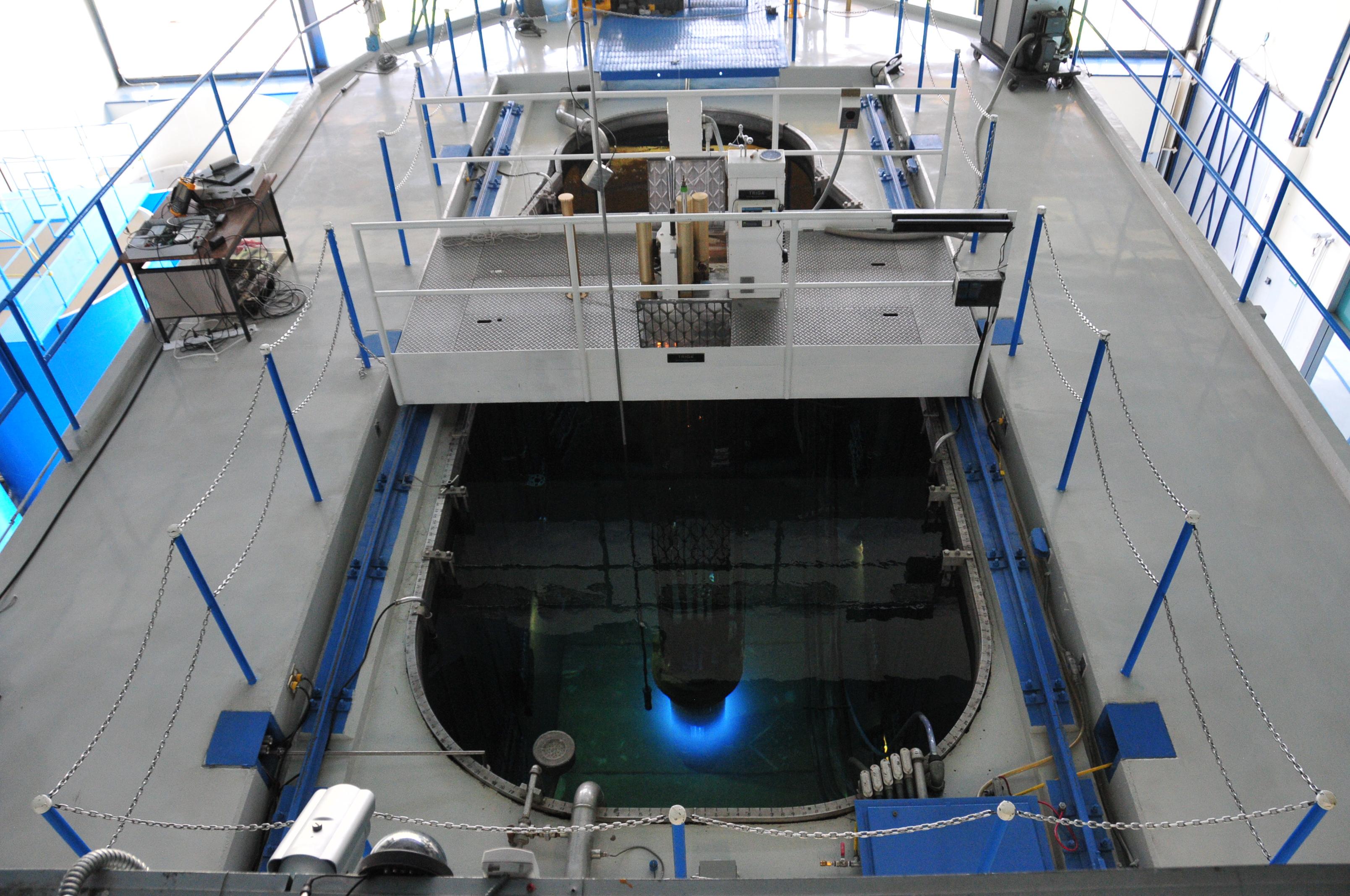 Reactor TRIGA Mark III