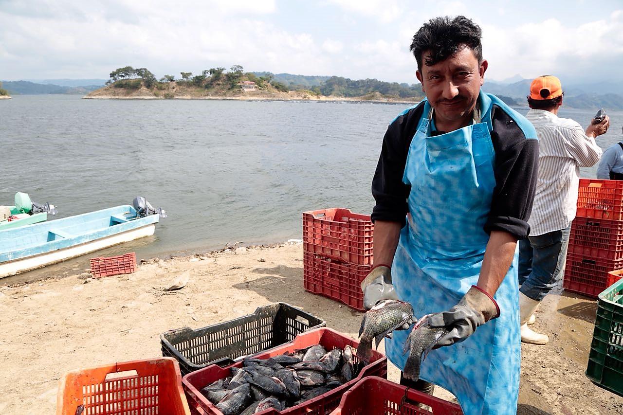 Pescador de tilapia en la orilla de la presa de Nezahualcóyotl
