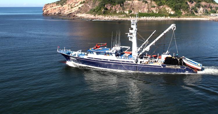 La pesquería de atún genera alrededor de 70 mil empleos, entre directos e indirectos y aporta más de 100 mil toneladas de productos con alto valor nutritivo.