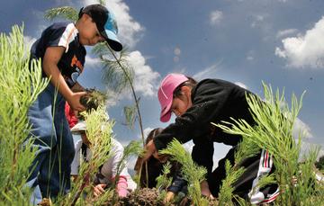 La educación ambiental es un proceso permanente y una respuesta a la crisis civilizatoria que afecta al planeta.