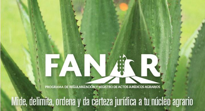 Imagen de maguey y sobre ella el logotipo de FANAR.