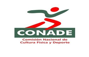 Gran desempeño de jóvenes mexicanos en la Serie Mundial de Clavados 2013