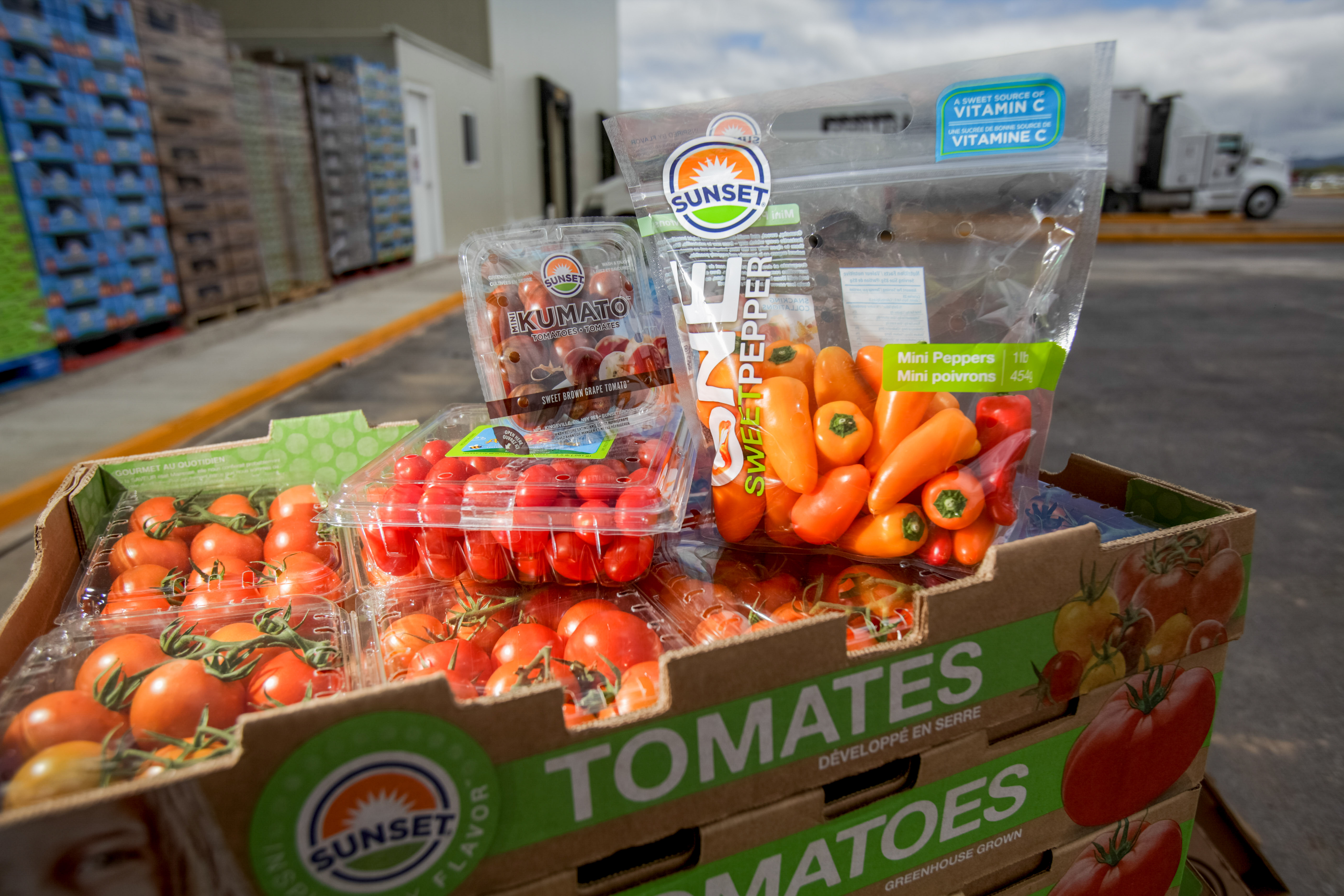 La calidad de los productos mexicanos nos abre las puertas de los mercados internacionales
