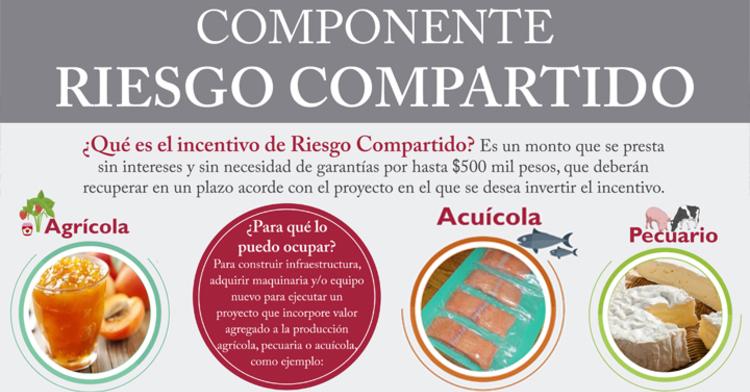 COMPONENTE RIESGO COMPARTIDO