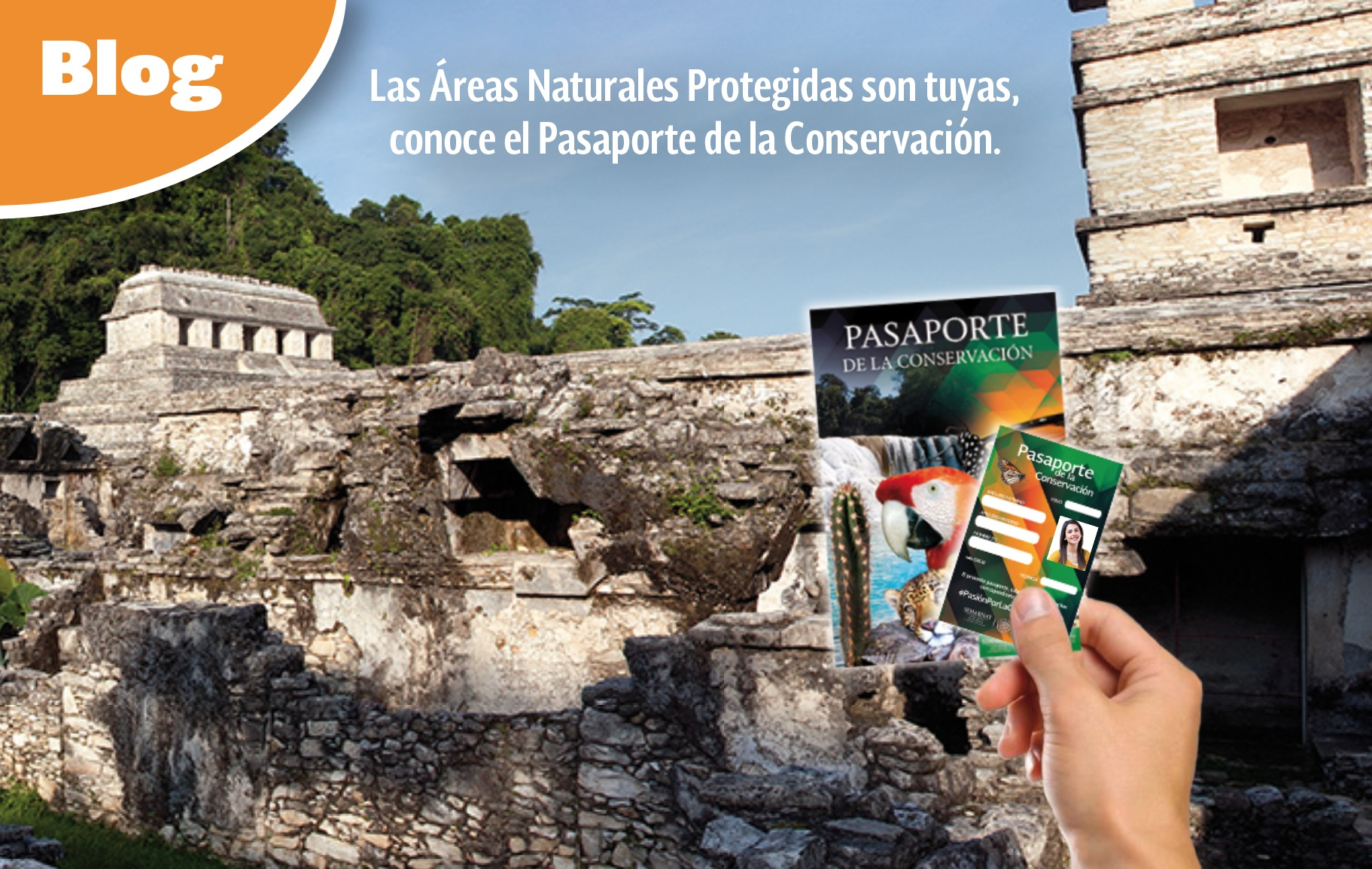 Pasaporte de la Conservación