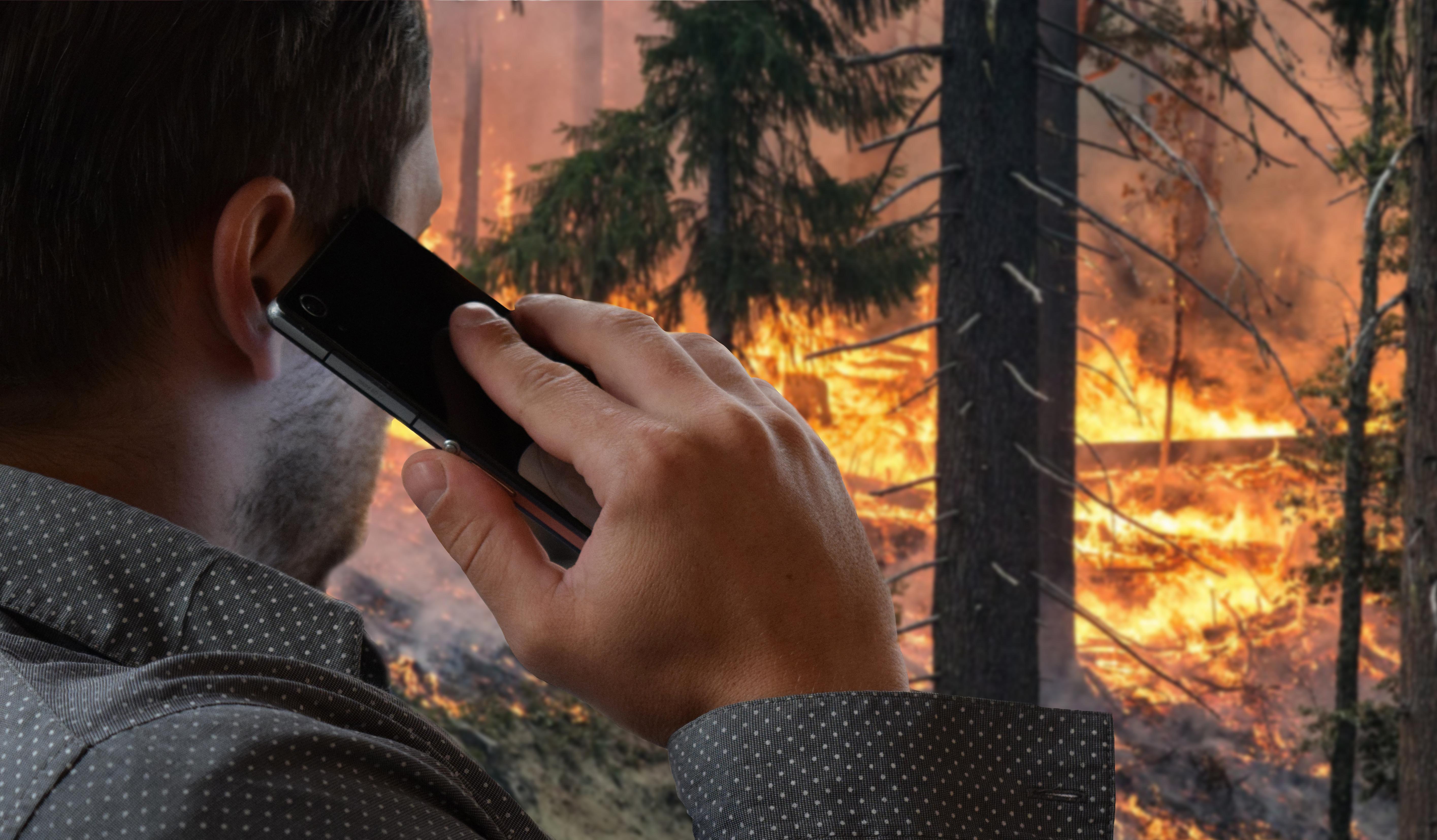 La CONAFOR exhorta a la población a reportar incendios forestales al 01 800 46 23 63 46, disponible las 24 horas del día durante todo el año.