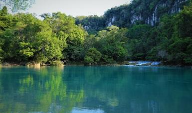 Nuestro esfuerzo por la conservación está convocando tanto al sector público como a las iniciativas privadas.