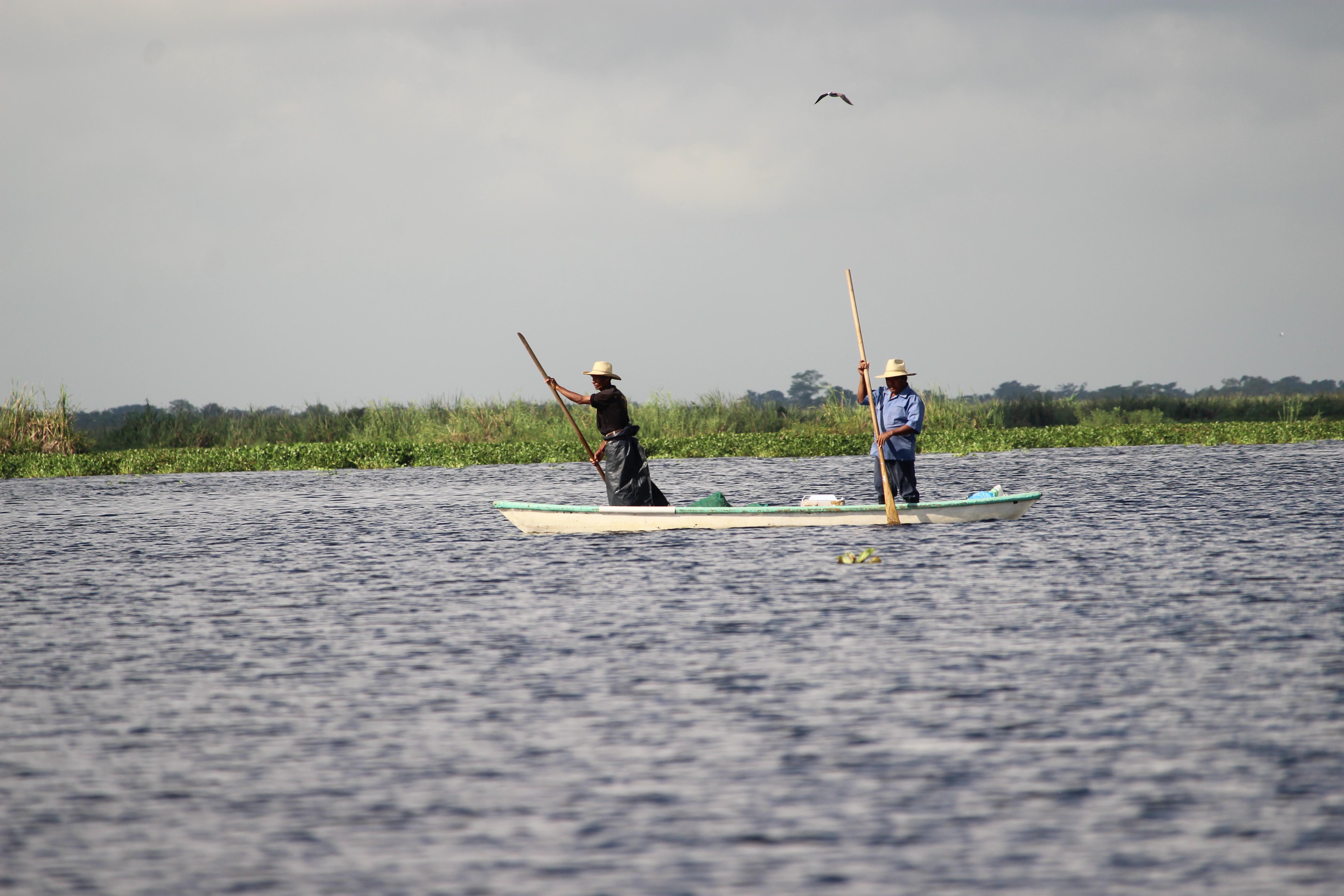 Personas sobre una lancha en los humedales de Nacajuca en Tabasco, remando avistando la presencia de aves y mamíferos.