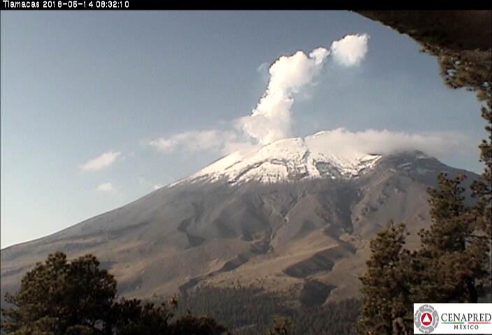 En las últimas 24 horas, por medio de los sistemas de monitoreo del volcán Popocatépetl, se identificaron 55 exhalaciones y se registró un sismo volcanotectónico, ayer a las 13:28 horas con magnitud de Mc 1.9, durante la noche se observó incandescencia.