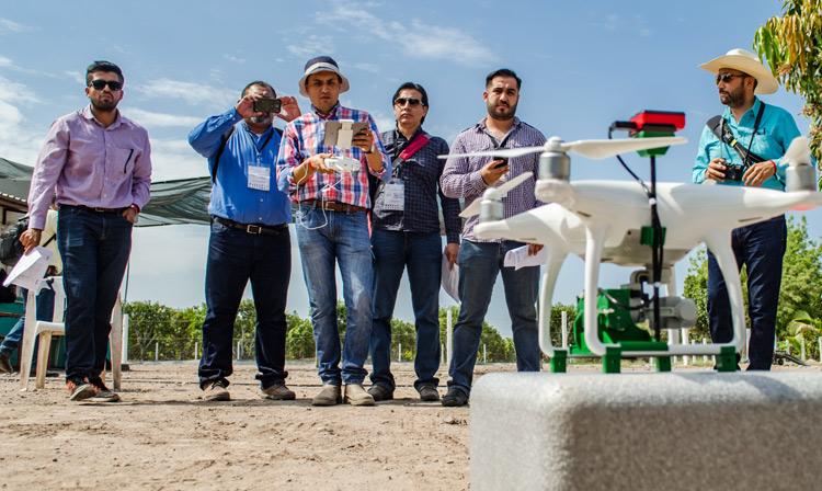 Los asistentes participaron en una sesión de vuelo de drones en huertas de mangos y cítricos, con la finalidad de conocer la metodología diseñada por la UIS del SENASICA para detectar  afectaciones en cultivos