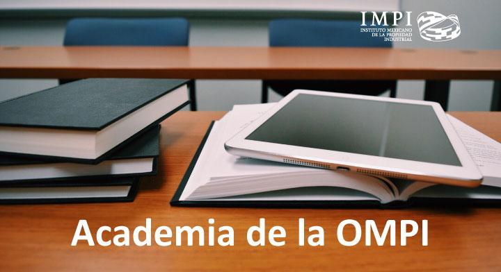 Cursos en la Academia de la OMPI
